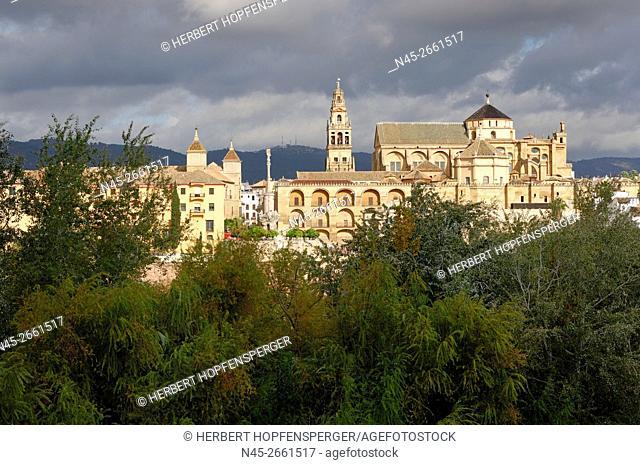 Cathedral, Mosque of Cordoba, Cordoba, Andalucia, Spain, Europe