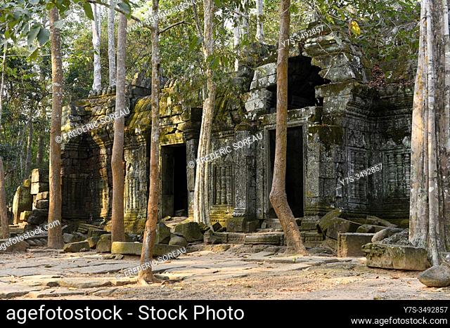 Ta Nei jungle temple, Siem Reap province, Angkor, Cambodia, South East Asia