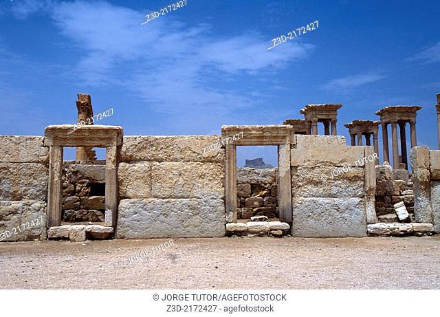 Roman ruins in Palmyra , Syria