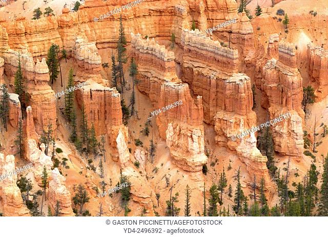 Rock formations, Sunset Point, Bryce Amphitheater, Bryce Canyon National Park, Utah, USA. Hoodoos are tall skinny spires of rock that protrude from the bottom...