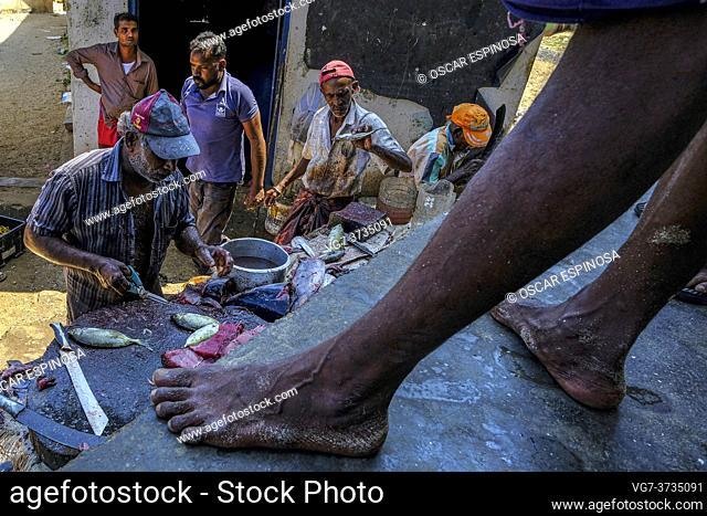Trincomalee, Sri Lanka - February 2020: Fish sellers at the Trincomalee market on February 16, 2020 in Trincomalee, Sri Lanka