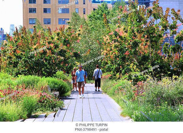 Usa, New York, Manhattan. High Line Park