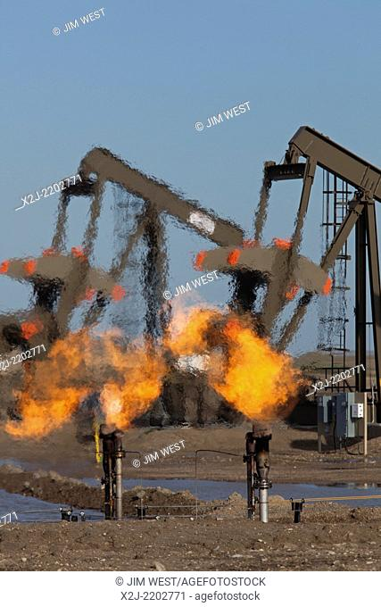 Watford City, North Dakota - Natural gas is flared off as oil is pumped in the Bakken shale formation. The gas is burned because no pipelines have been build to...