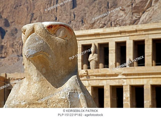 Statue of the falcon god Horus at the Mortuary Temple of Queen Hatshepsut / Djeser-Djeseru at Deir el Bahari near the Valley of the Kings, Luxor, Egypt