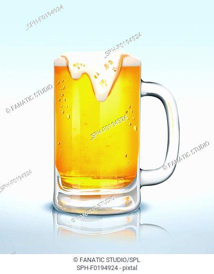 Illustration of beer glass