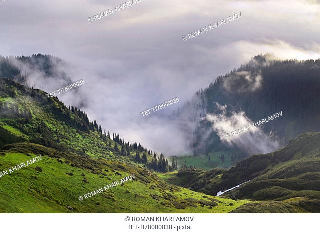 Ukraine, Zakarpattia, Rakhiv district, Carpathians, Maramures, Mountain landscape
