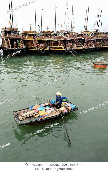 Tourist boats and rowing boats, Halong Bay, Vinh Ha Long, North Vietnam, Vietnam, Southeast Asia, Asia
