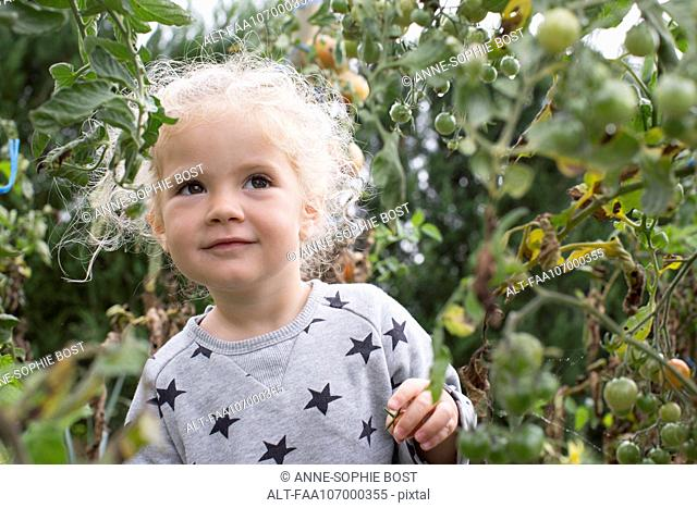 Little girl in vegetable garden