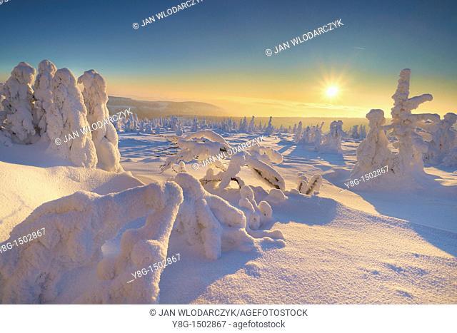 Szrenica in winter, Karkonosze National Park, Poland, Europe