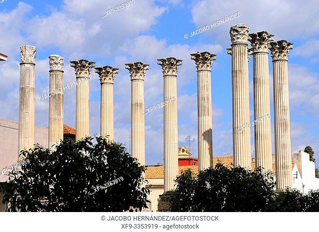 Roman temple of Córdoba. Andalusia. Spain