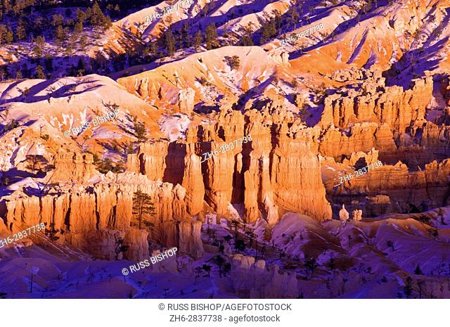Evening light on snow-dusted rock formations below Bryce Point, Bryce Canyon National Park, Utah USA