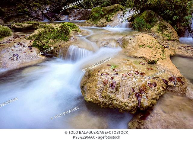 Source of the river Urederra, Parque natural de Urbasa-Andia, Navarre, Spain