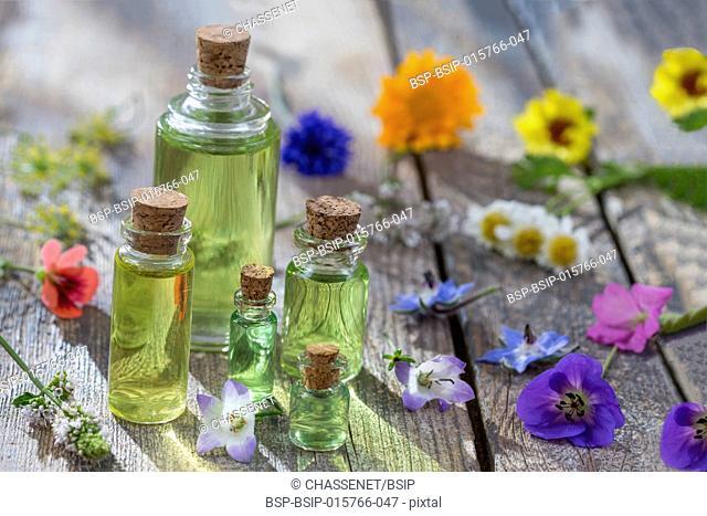 Alternative herb medicine. herbal vitamin on white background
