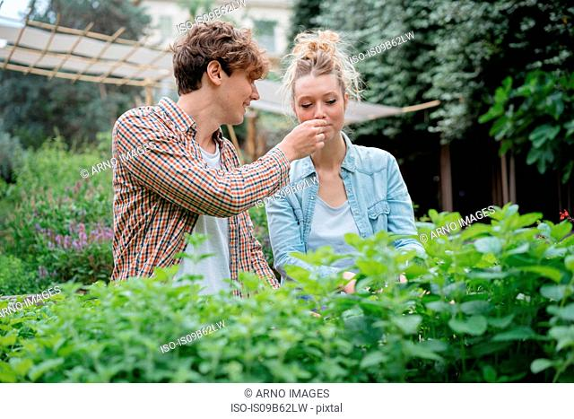 Young man and woman in garden, young man holding plant for woman to smell