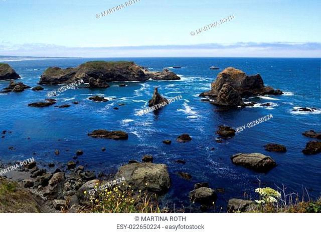 At the Oregon Coast