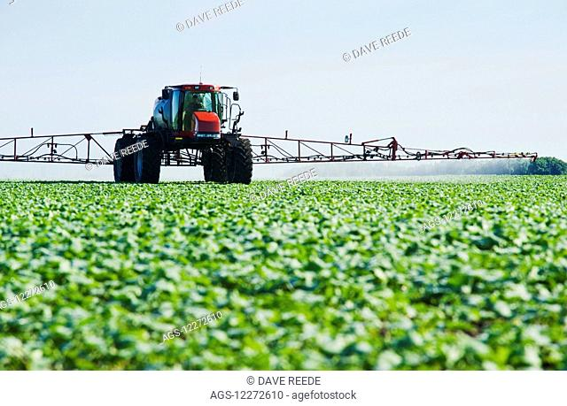 A high clearance sprayer applies herbicide to early growth canola, near Dugald; Manitoba, Canada