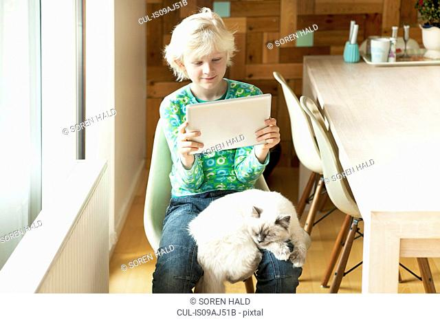 Boy with cat on his lap using digital tablet in kitchen