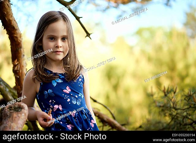 two adorable girls in summer dresses are climbing a tree in the forest