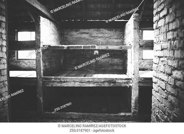 Auschwitz II Birkenau, Nazi concentration and extermination camp. Beds of women prisoners in a barrack of Auschwitz II Birkenau