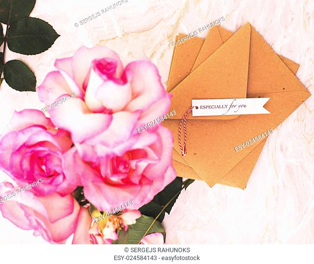 Blossom, flower. Beautiful, pink rose