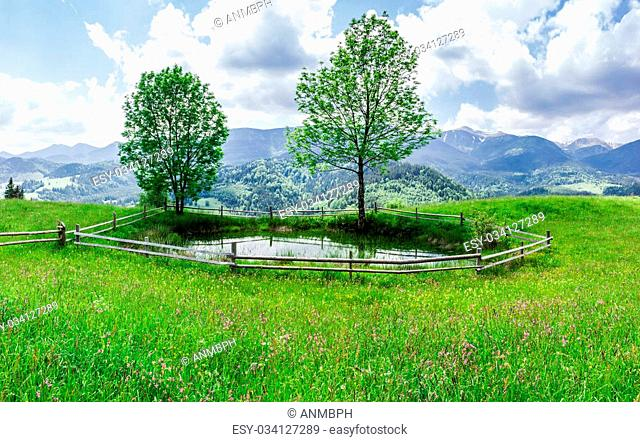 Small mountain lake on the meadow with grass and flowers and trees on the shore, fenced by wood planks against the background of a mountain range