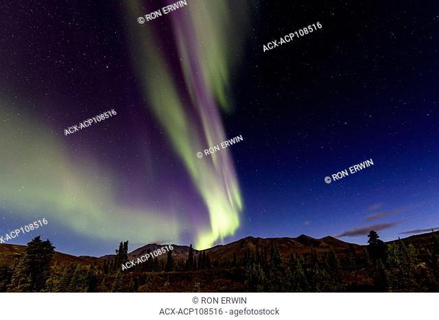 Northern Lights or Aurora Borealis over Tombstone Territorial Park, Yukon, Canada