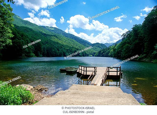 Biogradska Gora Forest and National Park, Kolasin, Montenegro