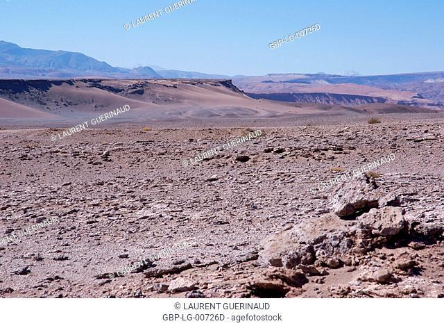 Worth of La Muerte, Los Flamencos Reserve National, Atacama Desert, Region of Antofagasta, Santiago, Chile