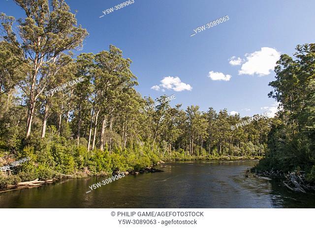 Huon River at Tahune AirWalk, an overhead walkway through the Tahune Forest Reserve, Geeveston, southern Tasmania, Australia