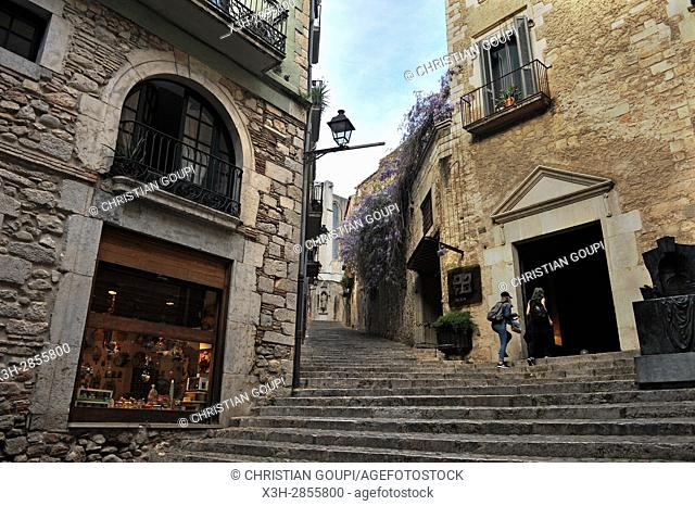 sidestepping alley leading up to the Cathedral (Pujada de la Catedral), Girona, Catalonia, Spain, Europe