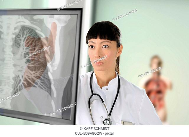 Doctor looking at chest image on screen