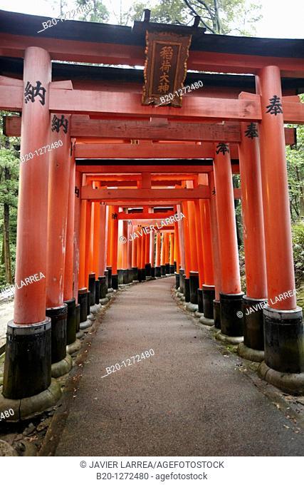 Toriis, Fushimi Inari Shrine, Kyoto, Japan