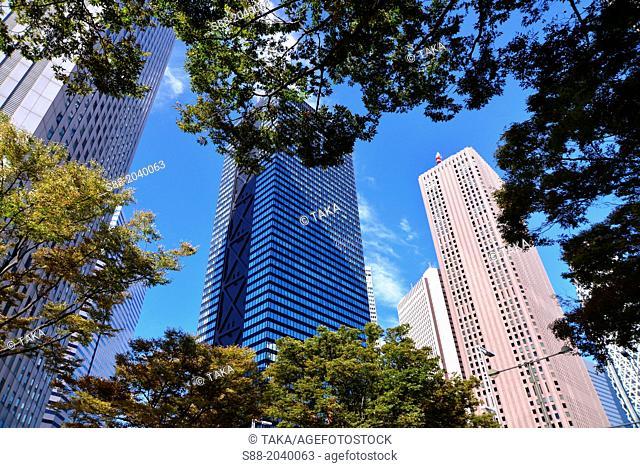 Sky skyscraper at Shinjuku Tokyo