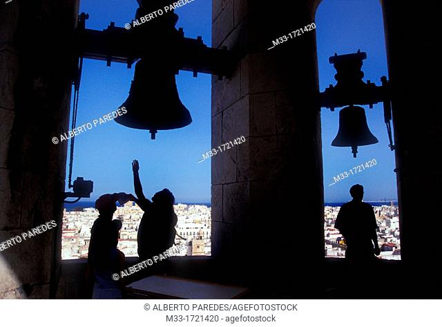 View of the city from the Cathedral bell tower / CADIZ city / Cadiz province / Andalusia / Spain