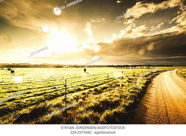 Vivid bright morning landscape of an Australian rural road running through Tasmanian farmland. Taken Policemans Point within the Bay of Fires Conservation Area