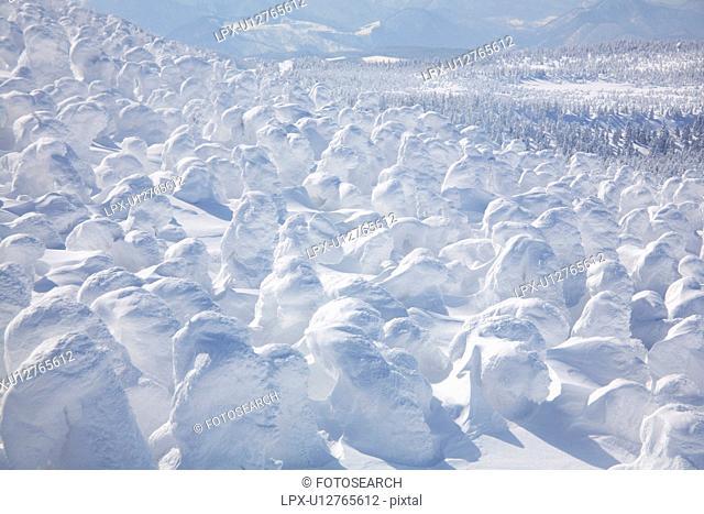 White snowscape, Yamagata Prefecture, Japan