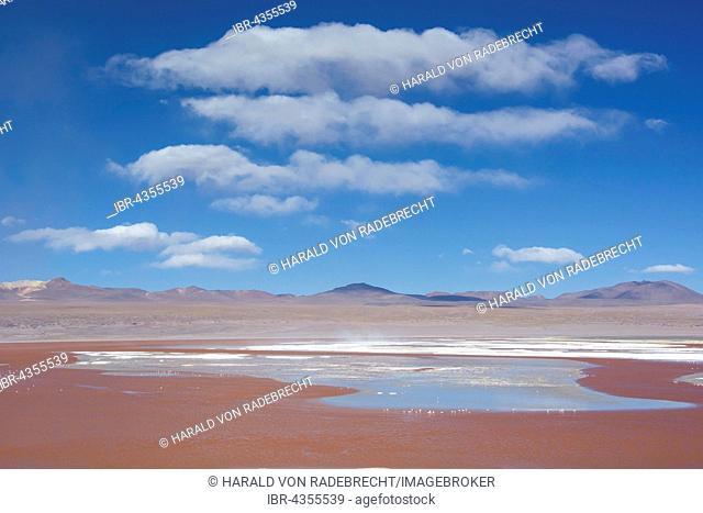 Laguna Colorada with red water due to high content of algae in Uyuni, Lipez, Bolivia