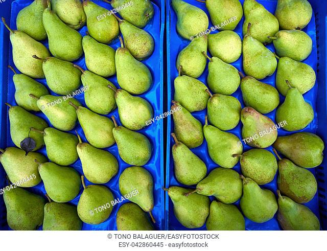Pears in an outdoor market in rows
