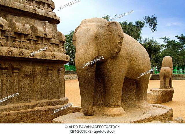 Five Rathas, Mahabalipuram, Mamallapuram, Tamil Nadu, India