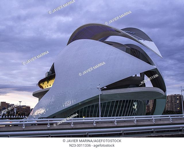 Palau de les Arts Reina Sofia opera house, City of Arts and Sciences, Valencia, Spain
