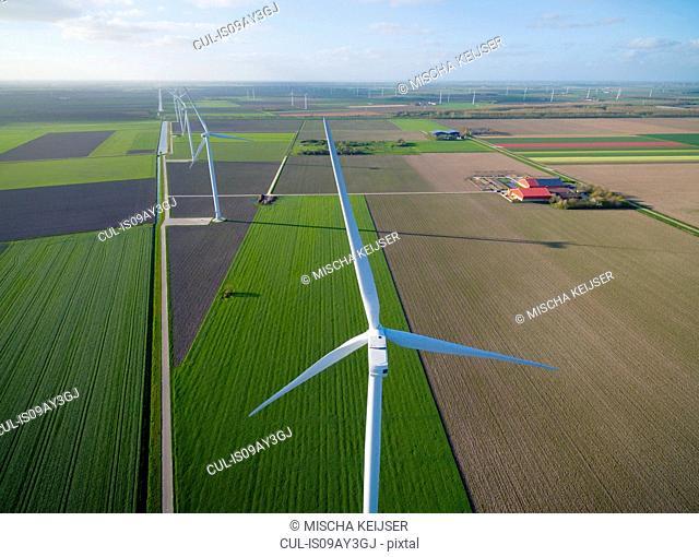 Wind turbines on farmland, Zeewolde, Flevoland, Netherlands