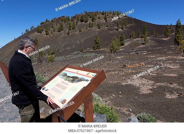 Man looking at info board at the volcano Samara, 1938 m, Teide National Park, UNESCO World Heritage - natural site, Tenerife, Canary Islands, Spain, Europe