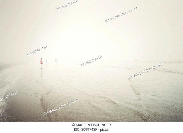 People on foggy beach, Tofino, Vancouver Island, Canada
