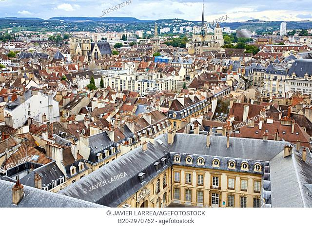 Dijon, Côte d'Or, Burgundy Region, Bourgogne, France, Europe