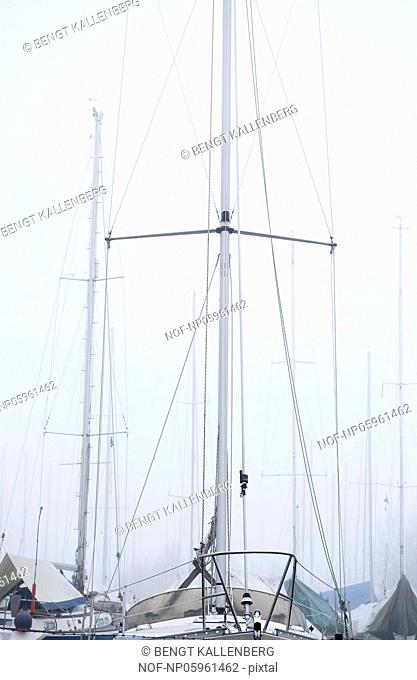 Masts in foggy weather. Sweden