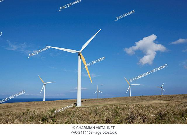 Windmills at Hawi Wind Farm, North Kohala; Island of Hawaii, Hawaii, United States of America