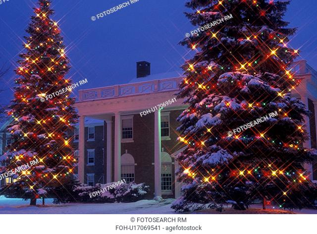 Christmas tree, college, university, decoration, Vermont, Two large snow covered evergreen trees decorated with colorful lights stand at the entrance to Noble...
