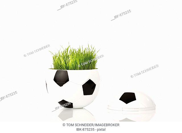 Half a football with original football pitch grass from the World Cup