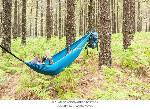 Female hiker reading book hammock in forest