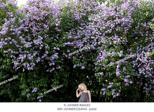 Girl standing by blooming trees